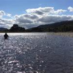 Scottish Salmon Fishing River Tay